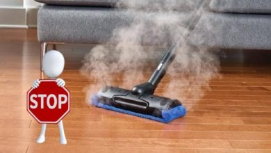 Steam cleaning carpet to get rid of fleas