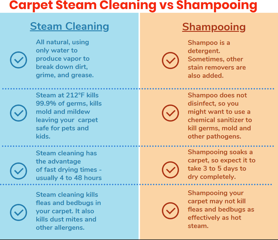 Steam Cleaning Carpets Vs Shampooing Differences Steam