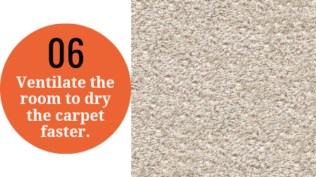 How to steam clean a carpet step 6 - Allow it to dry.