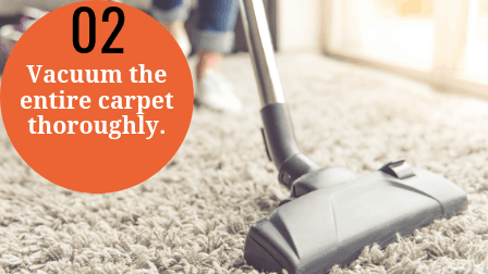 Steam cleaning a carpet step 2 -Vacuum the carpet