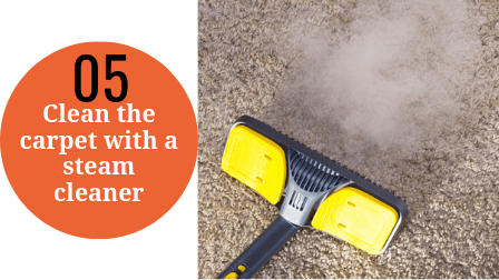 Steam cleaning a carpet step 5 - Steam clean the carpet.