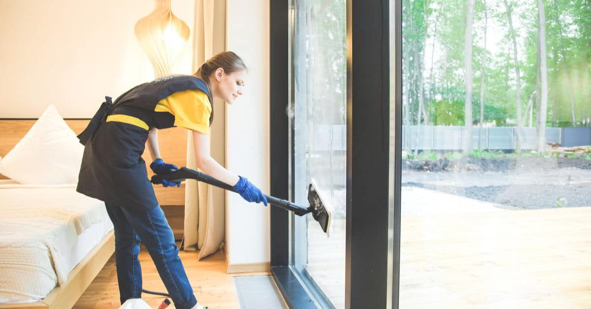 The Best Steam Cleaners For Windows 2020 Steam Cleaner Pro