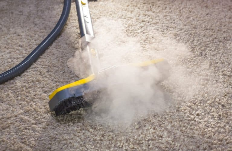 How to Steam Clean a Carpet (Illustrated Guide)