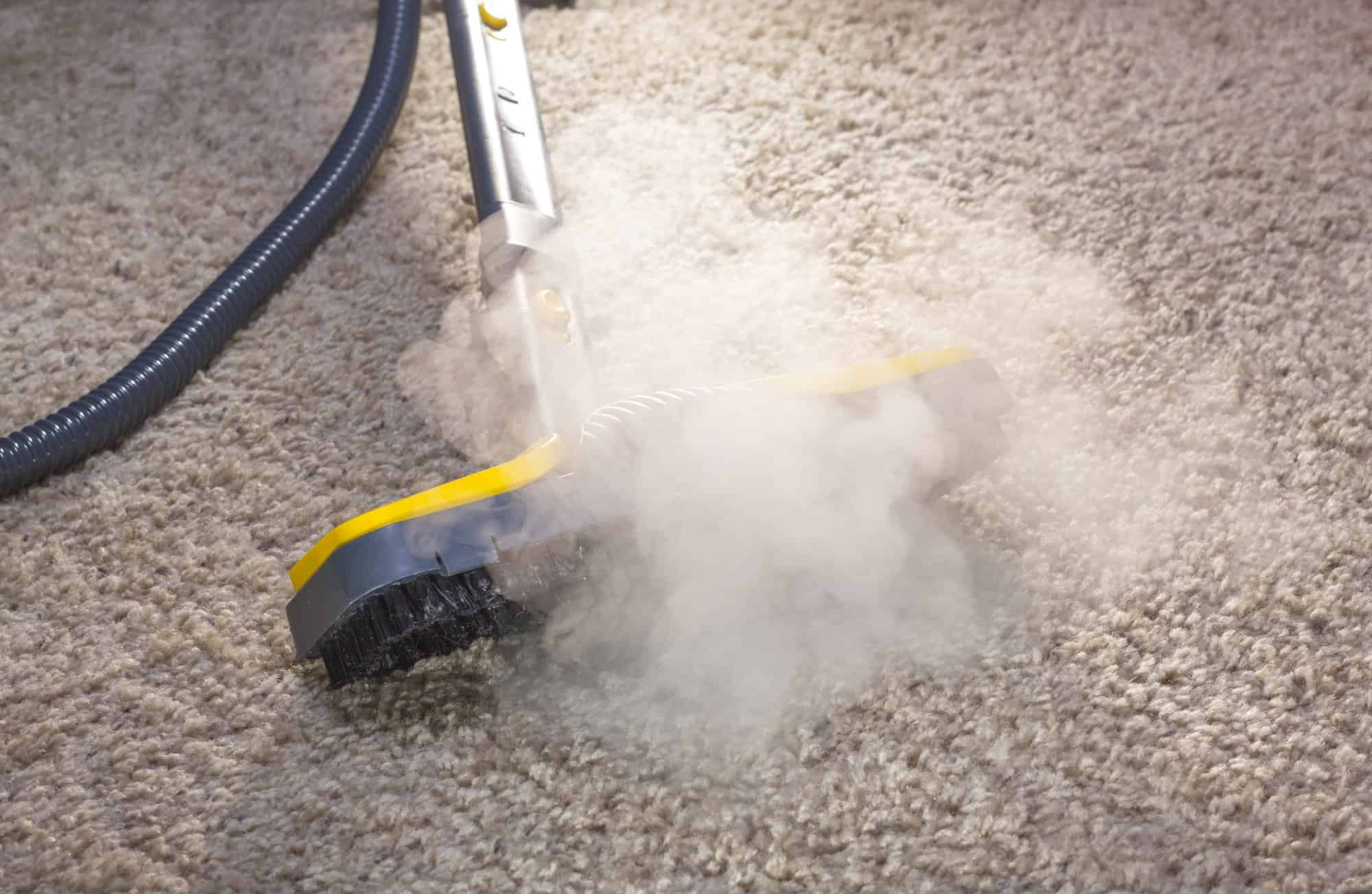 steam coming from steam cleaner on carpet