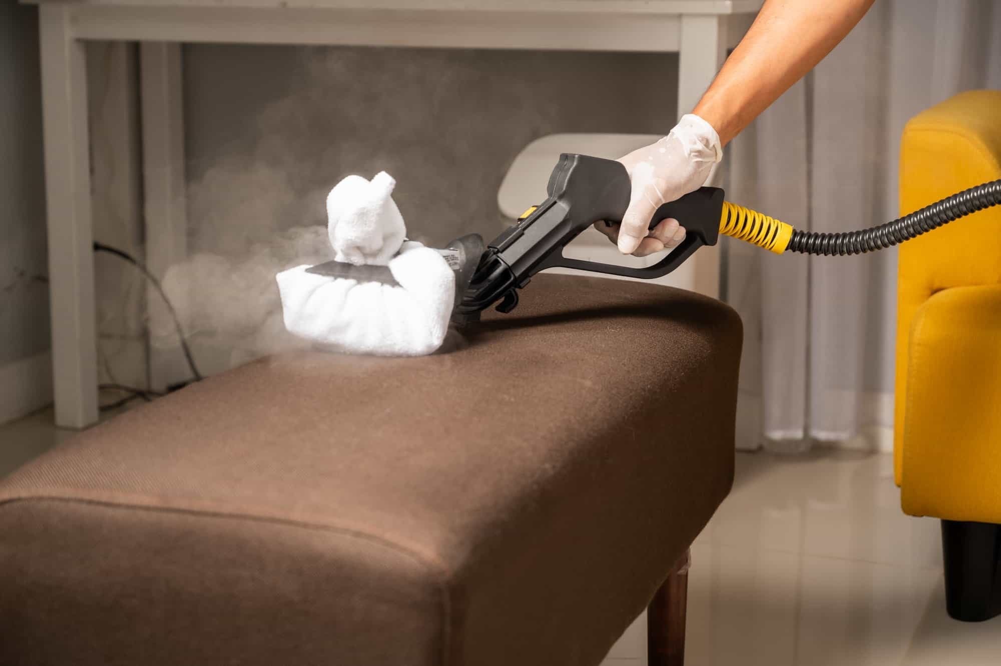 steam clean couch