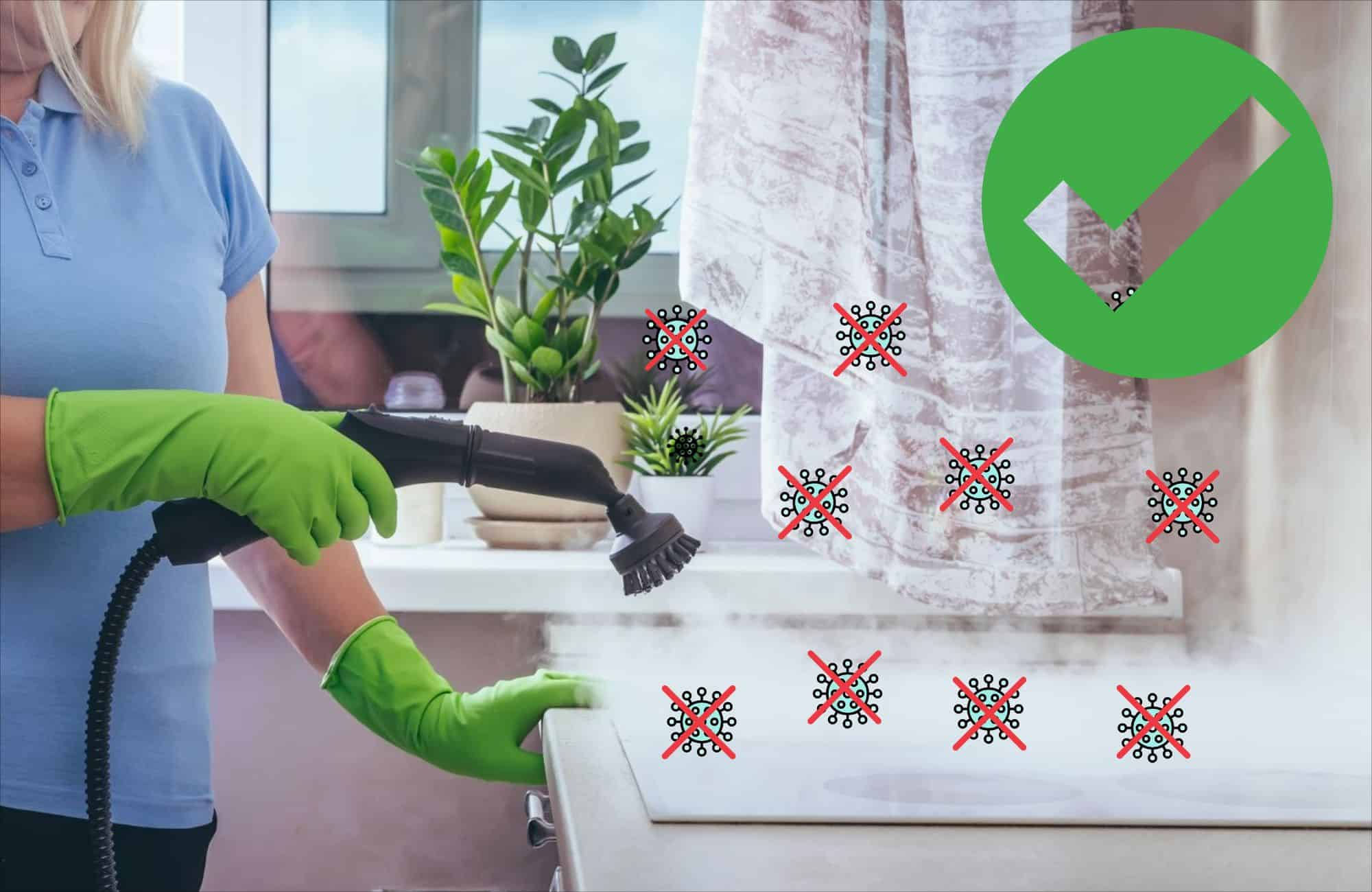 steam cleaning disinfects
